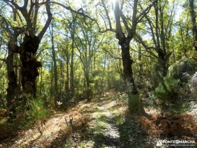 Sierra del Rincón-Río Jarama; las hoces del rio duraton la sierra de mariola peña trevinca mapa s